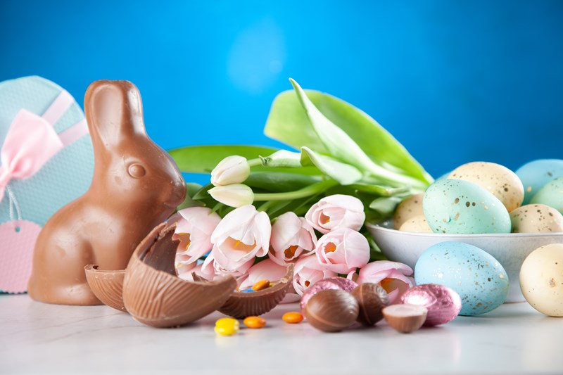 chocolate_bunny__with_flowers_and_easter_eggs